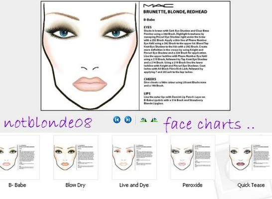 Product picture MAC Cosmetics Face Charts and Pre - Launched Looks